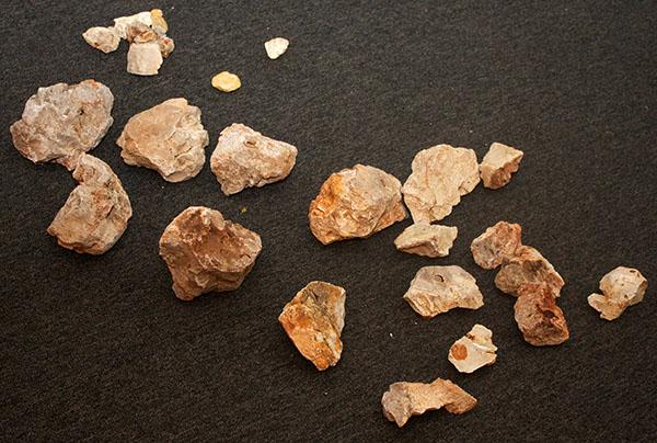 Stone for the aquascape