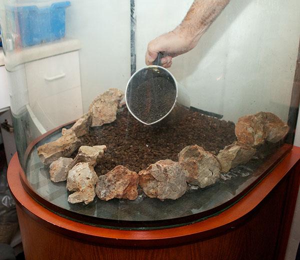 Pouring Aqua Soil
