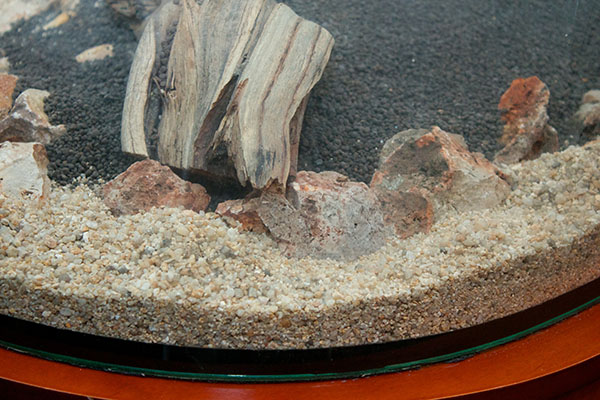 close up substrate