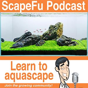 ScapeFu Podcast
