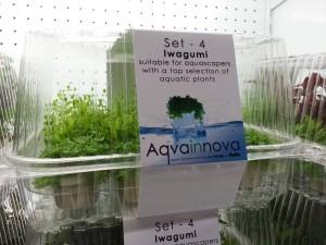 Aqvainnova Plants