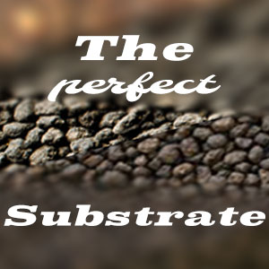 Perfect Substrate