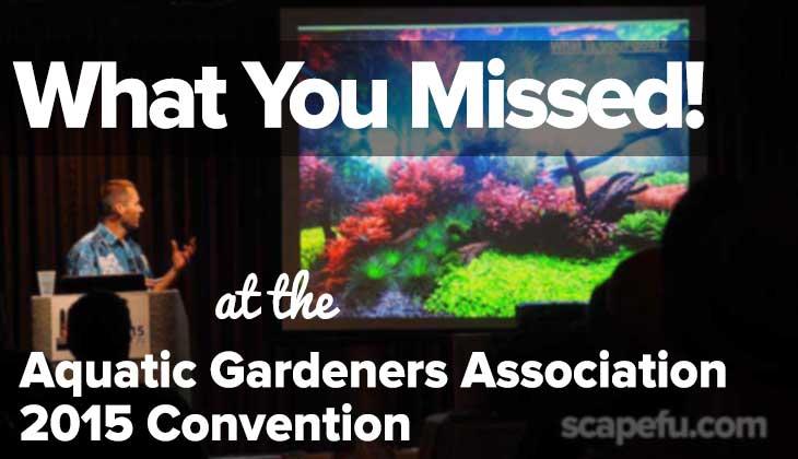 AGA Convention 2015