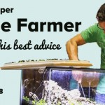Pro Aquascaper, George Farmer, gives YOU his best advice | ScapeFu038
