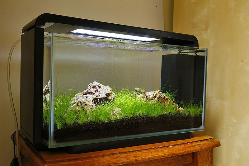 Superfish Home 25 litre