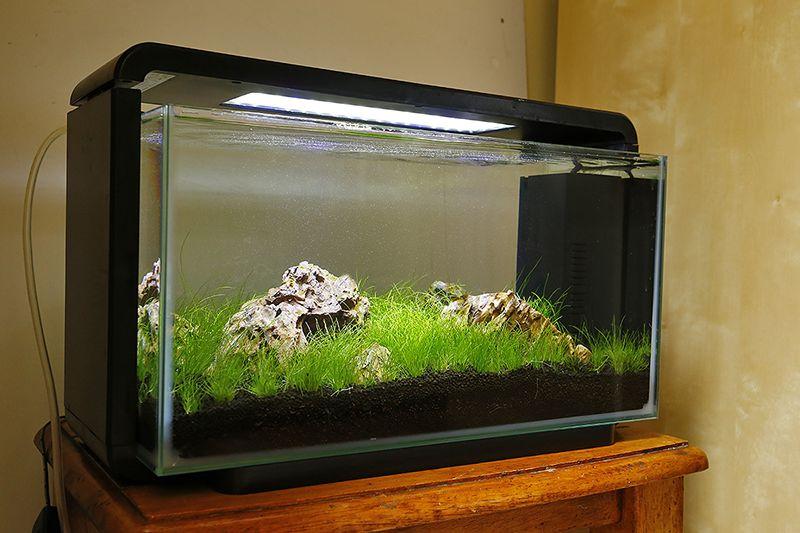 Superfish Home 25 litre