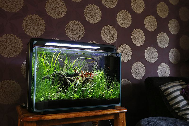 Superfish Home 60 litre
