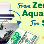 From Zero to Aquascape for $100 | ScapeFu044