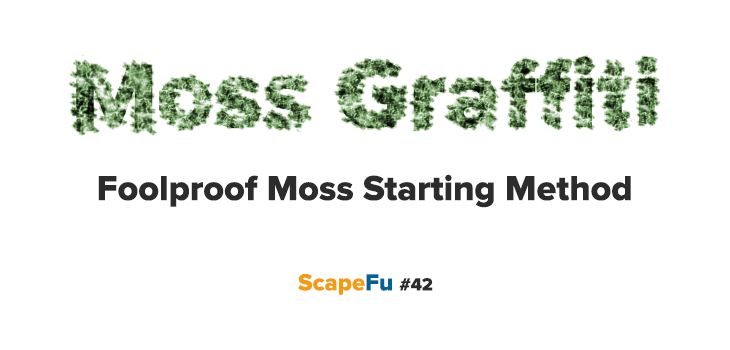 Moss Graffiti: Foolproof? Moss Starting Method