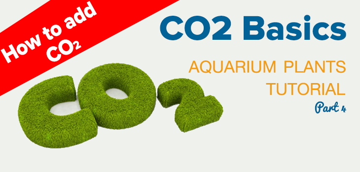 How to Add CO2