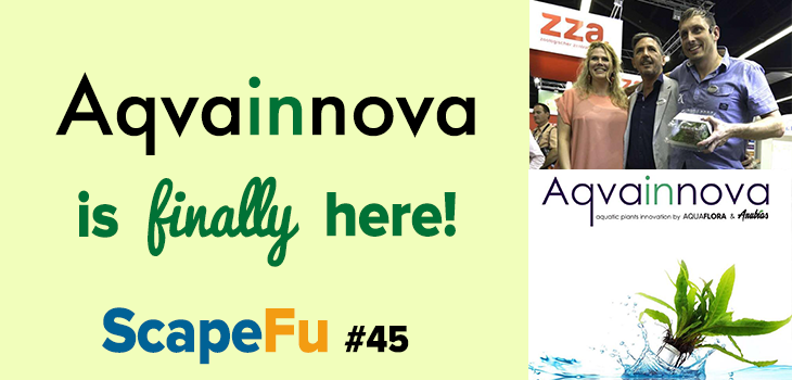 Aqvainnova is finally here - ScapeFu045