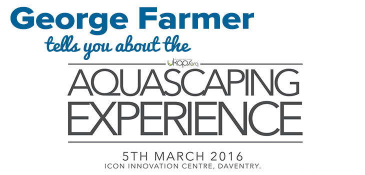 UK Aquascaping Experience