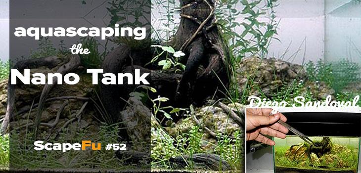 Aquascaping The Nano Tank Scapefu