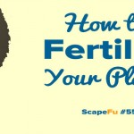 Ways to Fertilize Your Plants | ScapeFu055