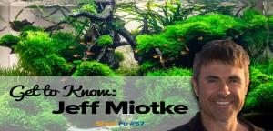 Jeff Miotke